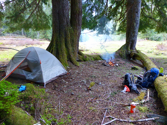 Camping in Enchanted Valley in Olympic National Park